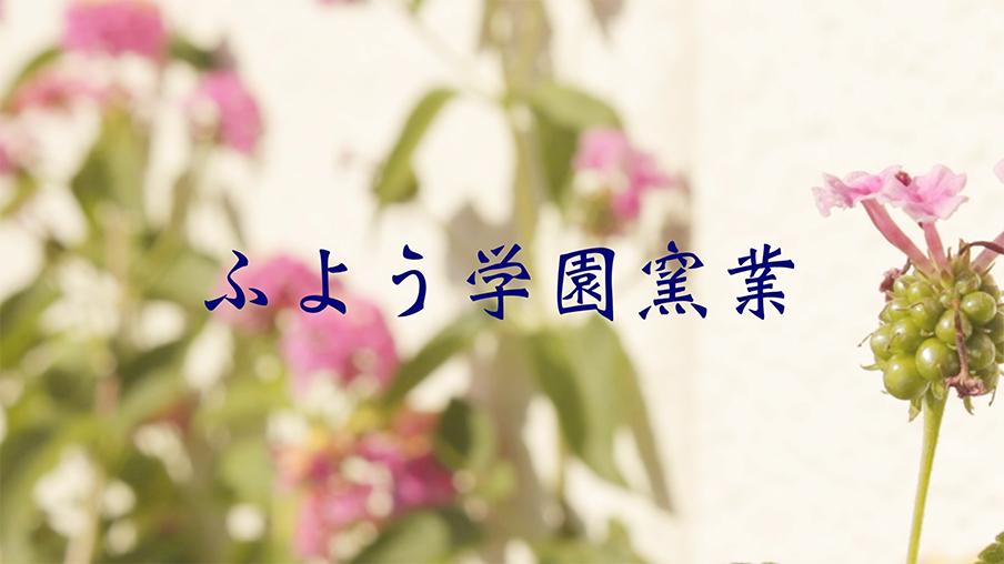 既存動画2.jpg