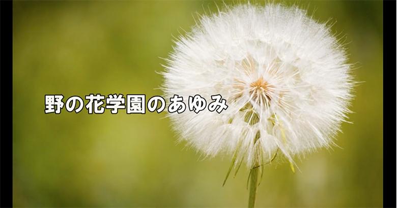 紹介動画2.jpg