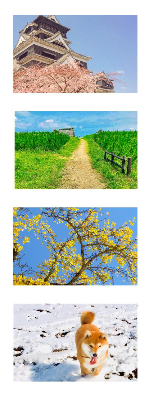 春夏秋冬.jpg