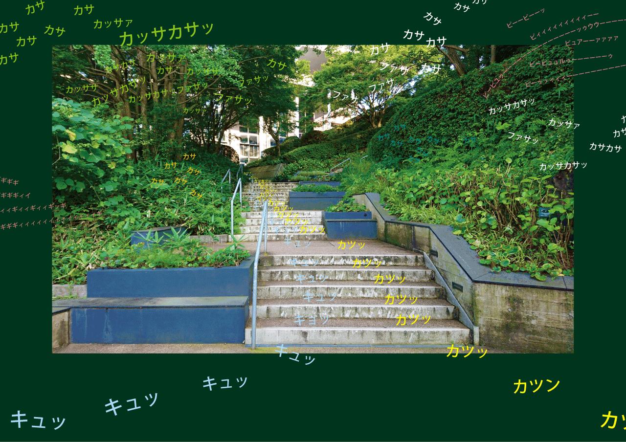 写真と文字(B4).png