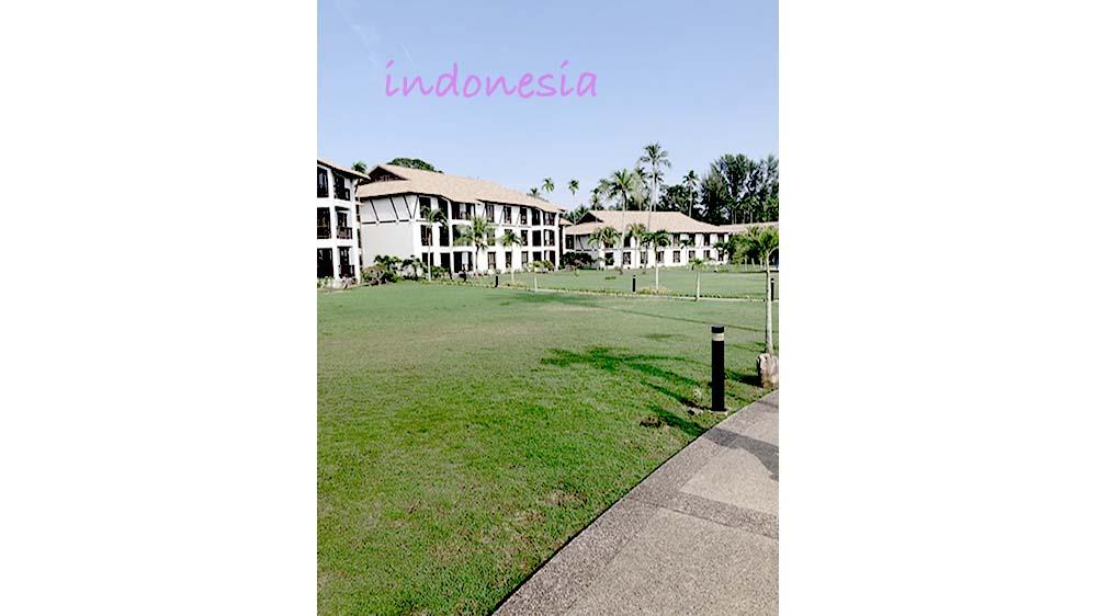 indonesiaV2.jpg
